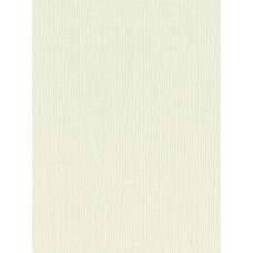 9109-43 Galeria 53 Plain Wallpaper