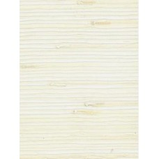 488-101 Wallpaper