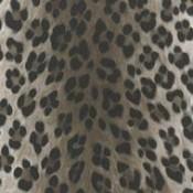Animal Print (9)