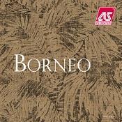 Borneo (12)